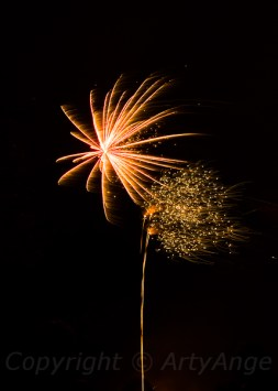 Fireworks at Chelsea Park-5