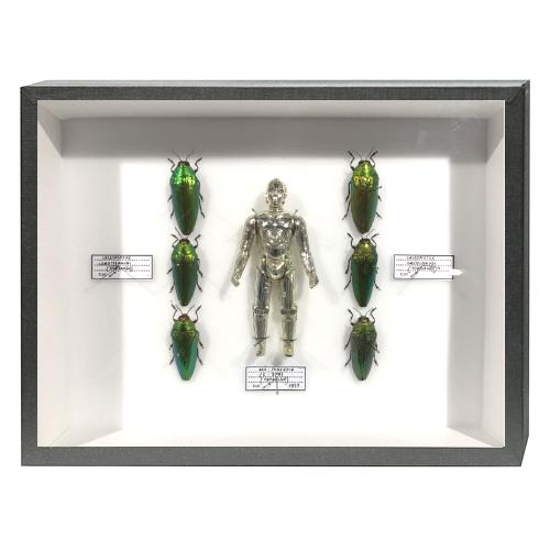 pocket-factory-benjamin-pietri-C3PO-6-scarabee-artydandy