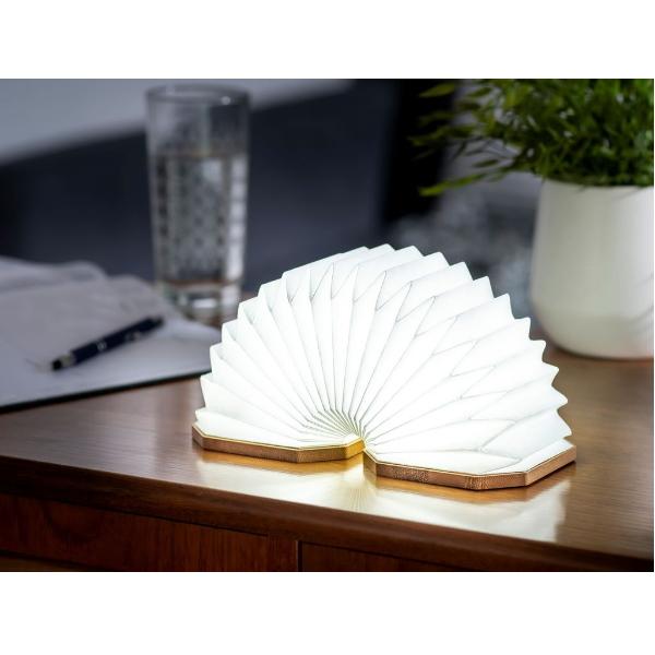 Gingko-lampe-accordeon-bamboo-artydandy