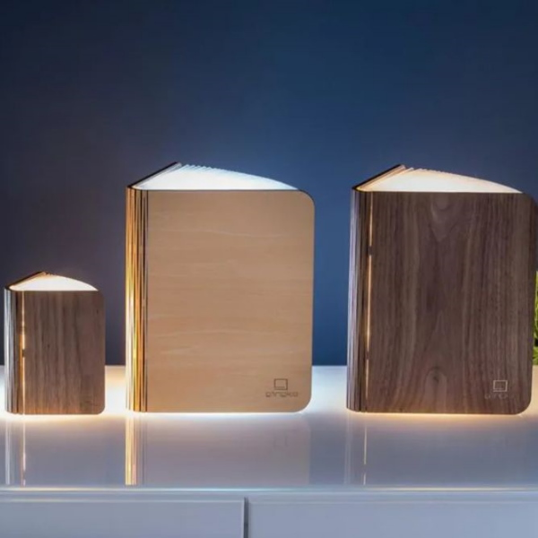 gingko-mini-lampe-format-carnet-A6-bois-erable-artydandy