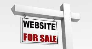 Do you want to go into websites flipping business?