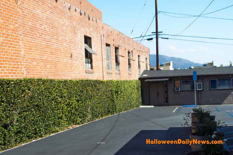 Alley from 'Silent Night, Deadly Night Part 2'