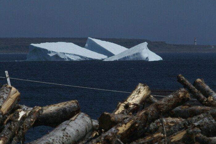 Egurra eta icebergak