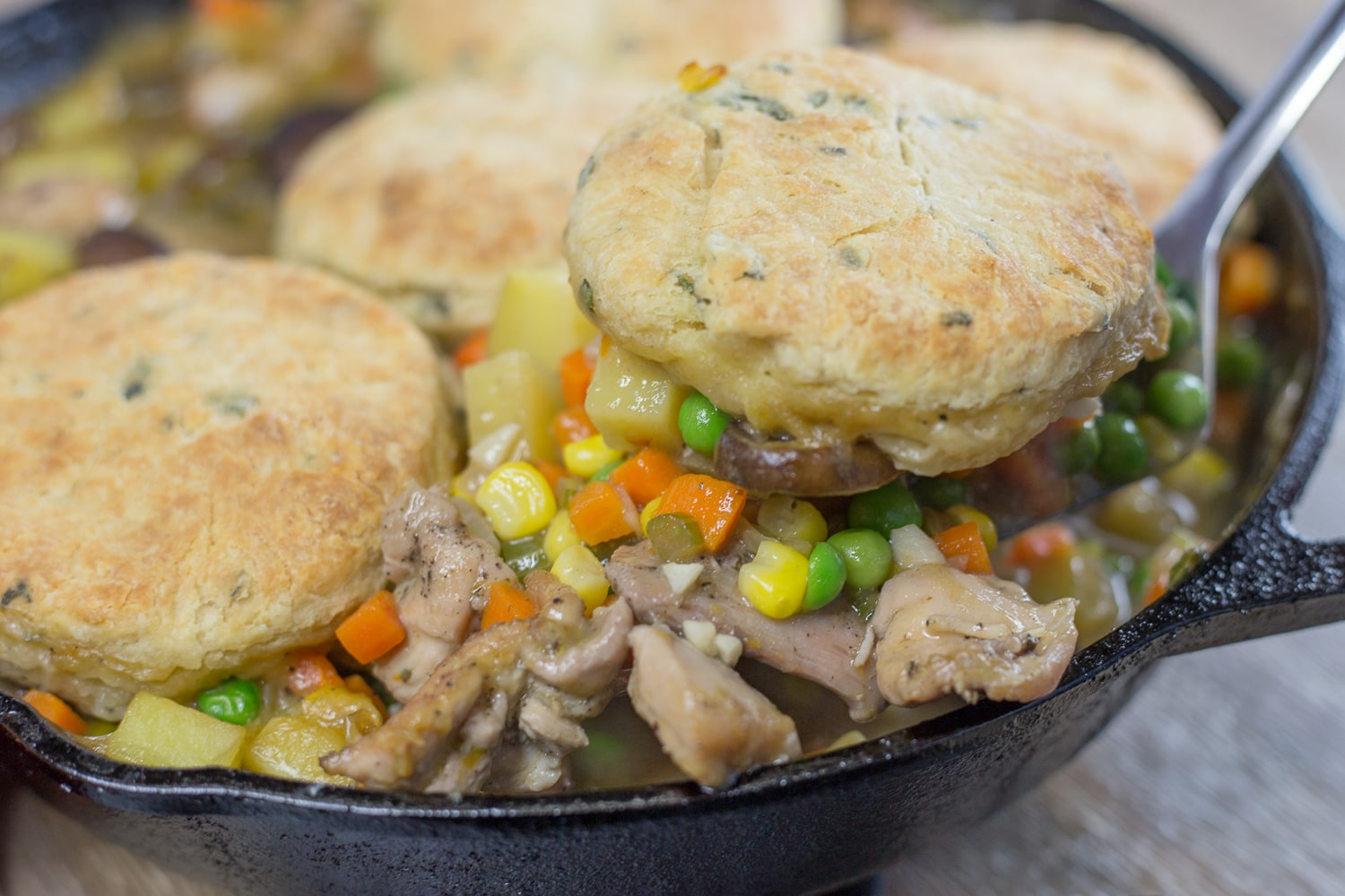 Chicken and biscuit pot pie is a one pot meal consisting of tender chicken and yummy vegetables in a creamy sauce topped with sage biscuits!
