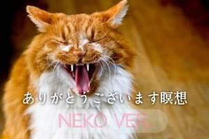 あくびの猫