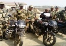BSF apprehend one smuggler with 15 cattle heads and 3 motorbikes