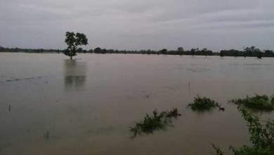 CM Pema Khandu Takes Note of Flood Situation in Arunachal
