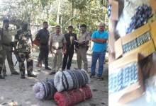 Photo of BSF Seizes 665 Bottles Phensedyl and 70 Kg Ganja in Cooch Behar