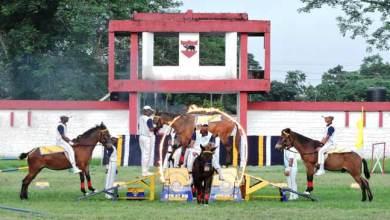 Photo of Gajraj Corps organises basic Horse Riding & Animal Management Camp
