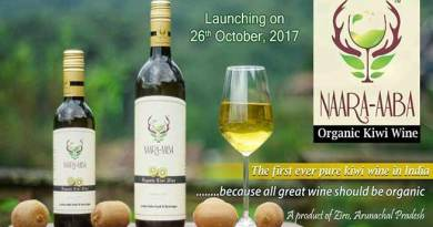 Tamiyo Taga launches the 1st Pure Organic Kiwi wine of India