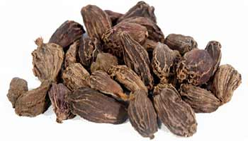 """RKMMS brings """"Achche din"""" through the Cultivation of Large Cardamom"""