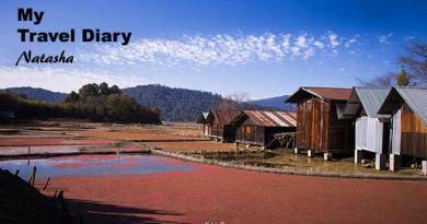 Arunachal: A small Village in Ziro....SIIRO