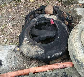 Arunachal: Miscreants tried to burn Sangam bridge in Siang district