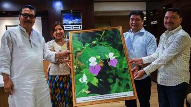 "Photo of Arunachal: Scientist Krishna Chowlu who discovered ""Impatiens – dorjeekhanduii"" meets CM Khandu"