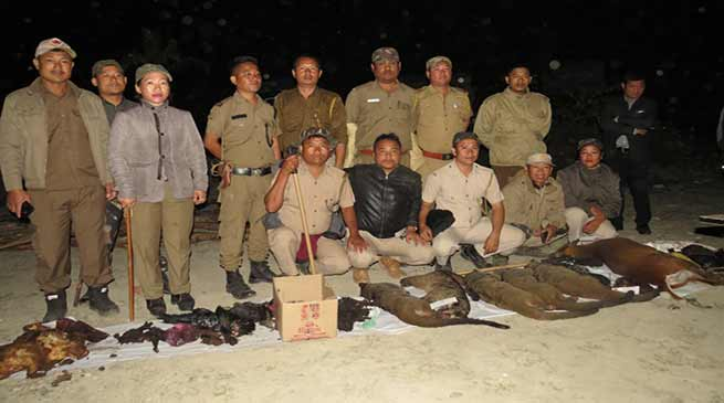 Arunachal: Forest officials seize huge quantities of bodies of wild animals