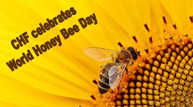 Arunachal: CHF celebrates World Honey Bee Day