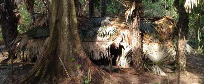 Arunachal: Changlang police, 9 Assam Rifle destroyed UG camp in Yukhi jungle