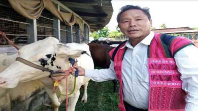 Photo of Arunachal: Farmers in Lohit get Milch Cows to boost self reliant economy