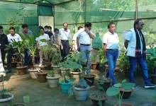 Itanagar: Everyone should join hands for protection of environment and forest, wildlife- Mama Natung
