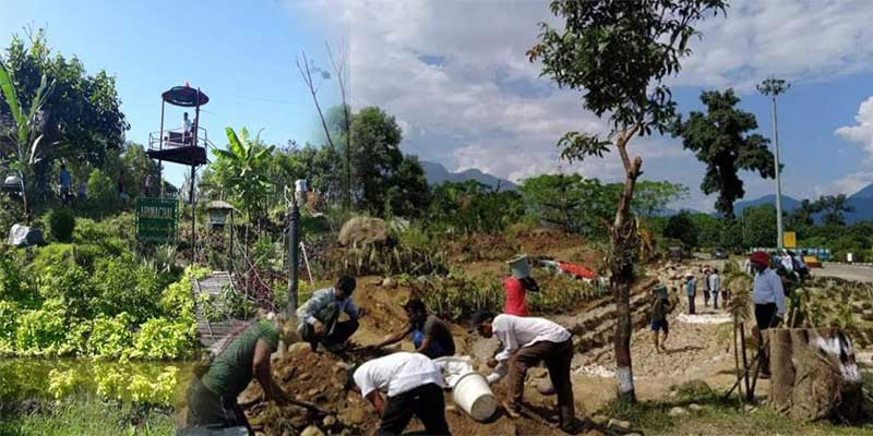 Arunachal: Unique landscaping by educationist laudable