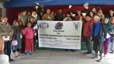 Arunachal: Training of Oyster Mushroom Cultivation held at Lekpong Village in Siang District