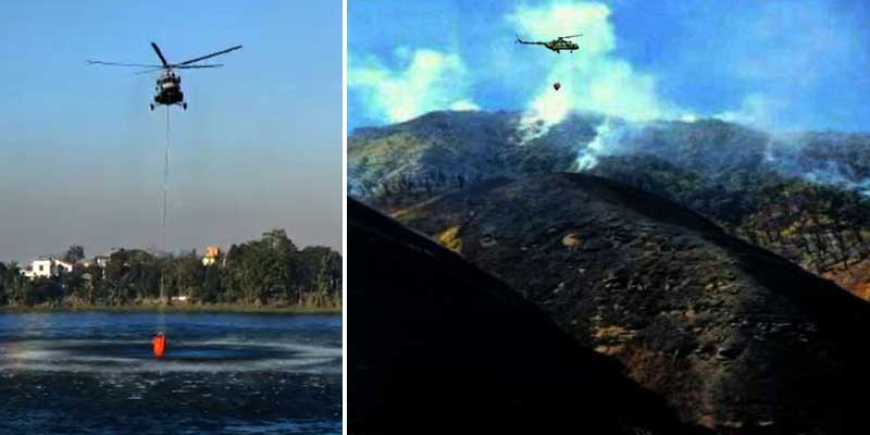Nagaland: Army, Assam Rifles join IAF, NDRF to douse Wildfire in Dzukou Valley