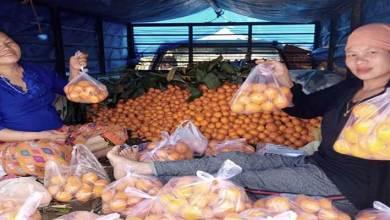 Arunachal: Anjaw oranges selling like hot cake in Lohit & Namsai market