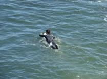 Surfing is popular along Santa Cruz coast