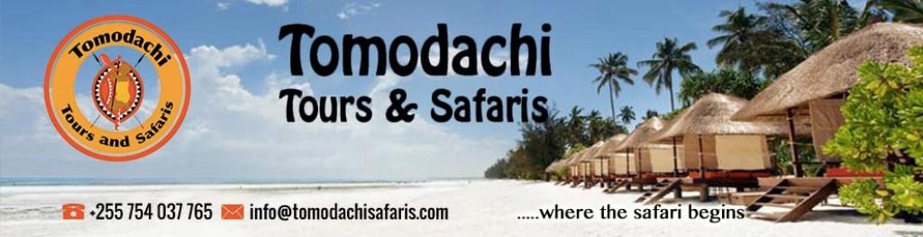 tomodachi-tours-and-safaris-1.x23369.jpg