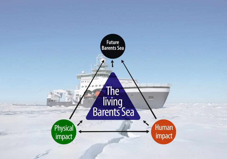 The Nansen Legacy research foci centred around the living Barents Sea. Illustration: Rudi Caeyers / UiT The Arctic University of Norway / Nansen Legacy