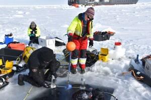 Dykkere Peter Leopold og Mikko Vihtakari henter ut en sedimentfelle fra undersiden av isen for Yasemin Bodur Foto Haakon Hop