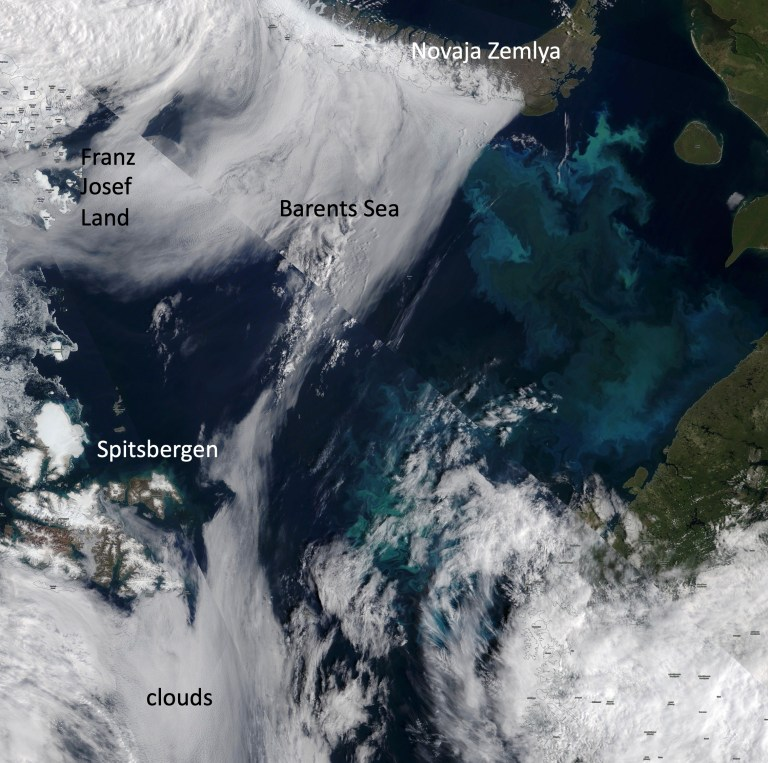 Figure 3: Observations of algal abundance from space can help, as the presence or absence of microalgae can change the color of the ocean