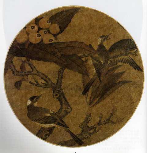 nêspera do japão blog árvores de são paulo - ricardo henrique cardim