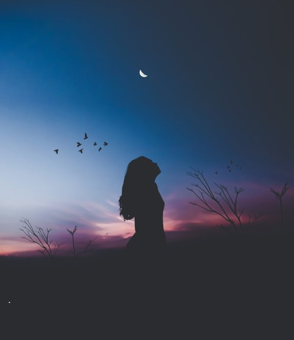 Silhouette of a girl looking at a twilit sky, birds flocking in the background.