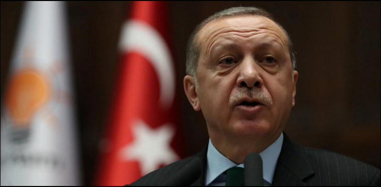Photo of Arms embargoes will not cease Turkey's Syria operation: Erdogan