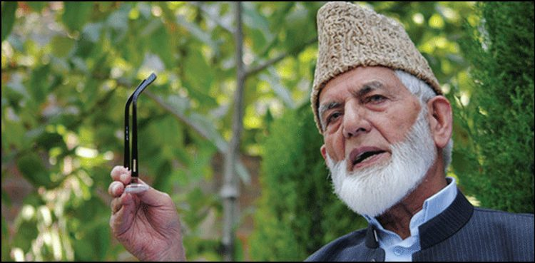 Photo of Kashmiris should proceed simply battle for freedom: Syed Ali Geelani