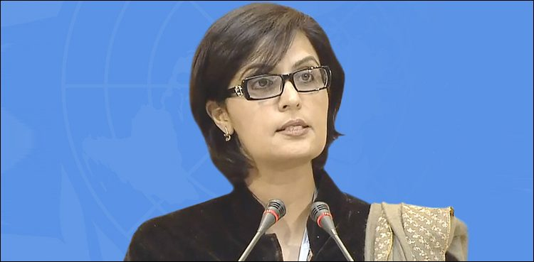 Photo of Govt to remove viral hepatitis by means of public-private partnership: Dr Sania