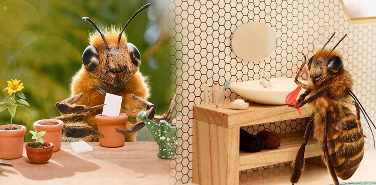 Photo of Bee turns into newest sensation on Instagram