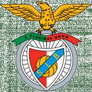 Escudo/Bandera Benfica