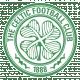 Escudo / bandera celta