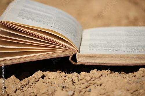 livre : lecture