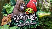 Rainforest Cafe® Animal Kingdom