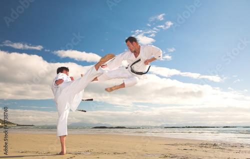 martial arts poster und plakate