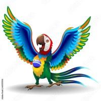 Brazil Macaw VS Mexico Chihuahua!