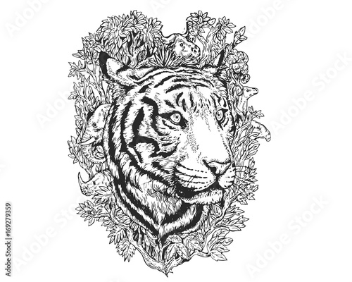 With drawing and handwriting requiring many of the same skills, the regular practice found in draw write now is designed to help students build their creativity and technical skills. Vintage Detail Realistic Hand Drawing Save Protected Animal Forest Concept Tiger Stock Vector Adobe Stock