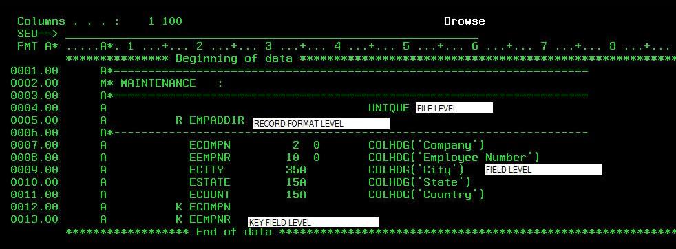 DDS - Data Description Specification File