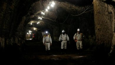 Photo of AngloGold considers higher dividend as gold price boosts earnings