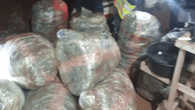 Minibus intercepted carrying marijuana