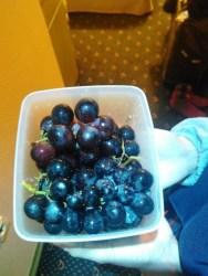 anggur-05-tl-2rb-rupiah