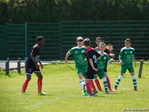 as andolsheim U 13 A Vs Avenir Vauban 00031